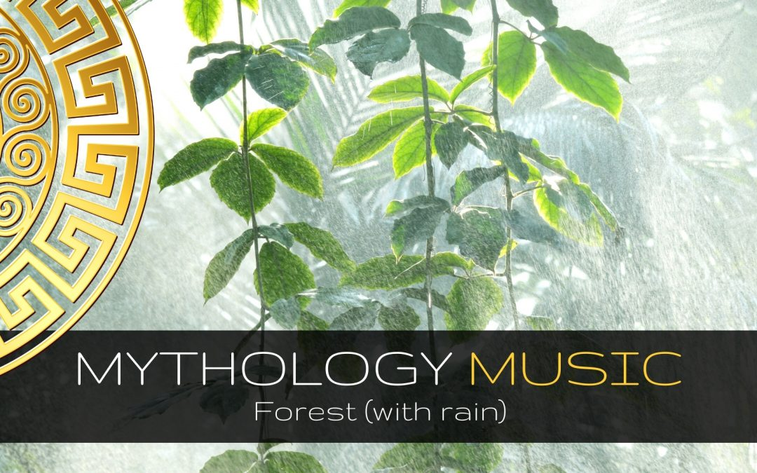 Forest (with rain)
